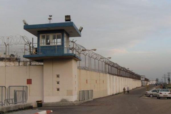 الاحتلال يحكم على طالب جامعي من جنين بالسجن 14 شهراً