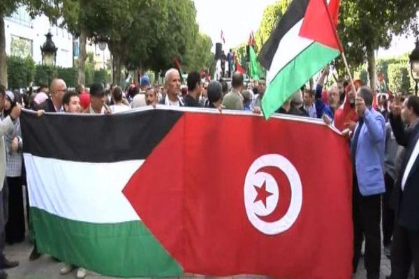 من محور القدس إلى القدس، مسافة انتفاضة: رؤية تونسية - صلاح الداودي