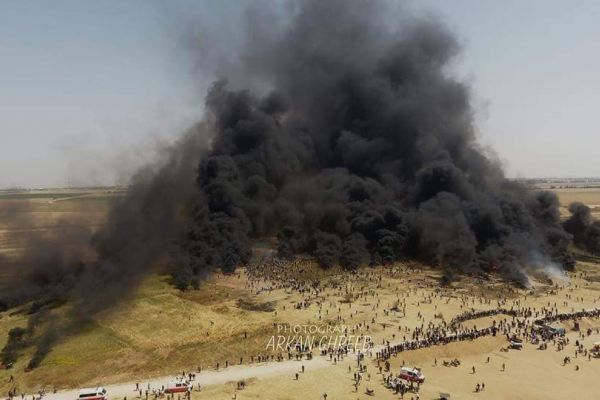 """يوم """"الكوشوك"""" الفلسطيني - ليلى عماشا"""